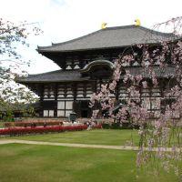Templo Todaiji, Нара