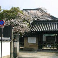 ならまち 元興寺前, Сакураи