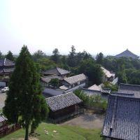 View from Nigatsu-Do, Сакураи