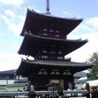 Kofukuji - 興福寺, Сакураи