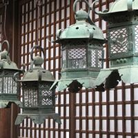 Bronze lanterns at Kasuga Shrine, Сакураи