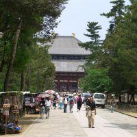Todaiji, Сакураи
