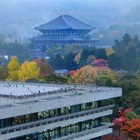 1300年前の建造物(東大寺大仏殿)と近代の建造物(奈良県警察本部), Сакураи