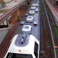 JR East Niigata Sta. 新潟駅 485系