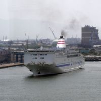 ferry lilac, Кашивазаки
