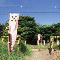 nut-004, Кашивазаки