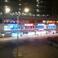 Niigata station south exit, Оджия