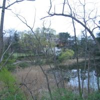 Junsai-Ike Park(じゅんさい池公園), Оджия