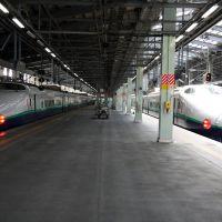 新潟駅 200系, Оджия