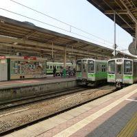 新潟駅, Оджия