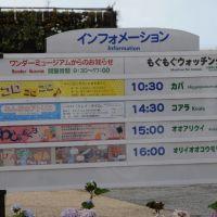 沖縄子供の国, Ишигаки