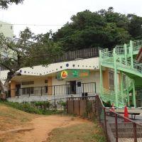 爬虫類館, Ишигаки