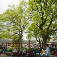 天王寺動物園  Tennoji zoo, Моригучи