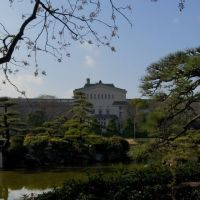 The Garden and Osaka city museum of fine arts., Ниагава