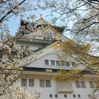 Japan Kyoto Sakura日本大阪京都櫻花, Осака