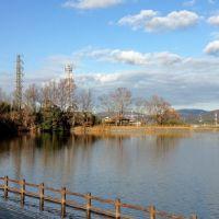 冬晴れの古池 - 京都・精華町・菱田にて (2011/12/31), Хираката