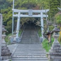 Kuraoka Shrine (鞍岡神社) in Seika-chō, Kyoto Prefecture!, Хираката