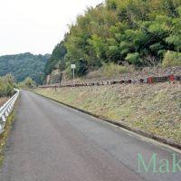 お遍路 38番金剛福寺までの道のり「くろしお中村線を見ながら進む」南西 2012, Сага