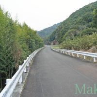 お遍路 38番金剛福寺までの道のり 西 2012, Сага