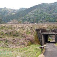 お遍路 38番金剛福寺までの道のり「くろしお中村線をくぐる」北西 2012, Тосу