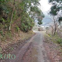 お遍路 38番金剛福寺までの道のり 2012, Тосу