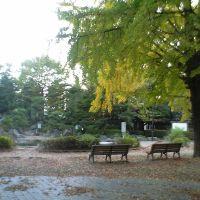 北浦和公園のベンチ, Вараби