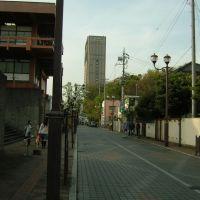 埼玉会館前/埼玉県さいたま市浦和区, Вараби