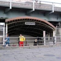 浦和仲町地下道 (Urawa-nakamachi underpass), Вараби