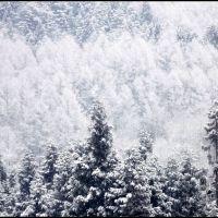 Winter colors (6), Ogawa village, Иватсуки