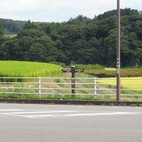 国道294号線稲沢を行く-関東ふれあいの道標識, Йоно