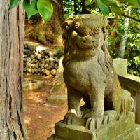 神明社 狛犬 Shinmei shinto shrine, Ханно
