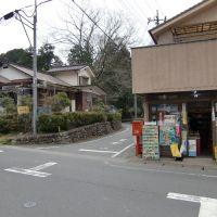 吉崎商店 ひまわりプール入口, Ханно
