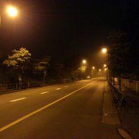 夜の成木街道 吹上峠への道, Ханно
