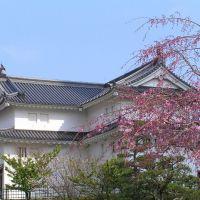 巽櫓, Атами