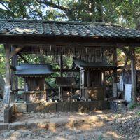 Daitōryō-Jinja  大頭龍神社  (2009.12.23), Атами