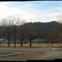 城北公園 遊具広場 運動場, Атами