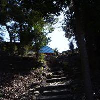 Iwata, Ивата