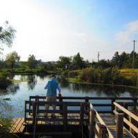 ひょうたん池, Ивата