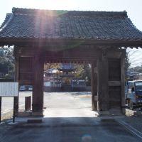 120408 西光寺の表門, Ивата