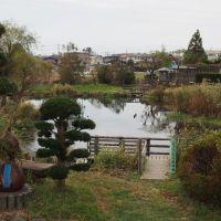 121014 ひょうたん池, Ивата