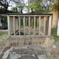 玉子井戸, Масуда