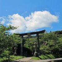 刺鹿神社, Ода