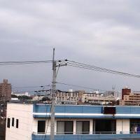 Japan, Tochigi Prefecture, Oyama 国道50号線, Ояма