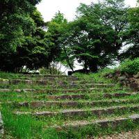 浜田城跡, Хамада