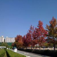 浜田市東公園Hamada City east park, Хамада