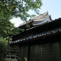 大歳神社 (元浜), Хамада
