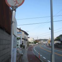 石見交通 杉戸町バス停 Sugito Bus stop, Хамада