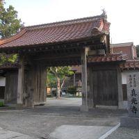 真光寺 Shinkouji Temple, Хамада