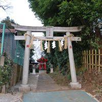 Inari-Jinja  稲荷神社  (2009.02.11), Ичикава