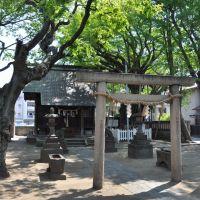 Shimmei-Jinja  神明神社  (2009.04.29), Ичикава